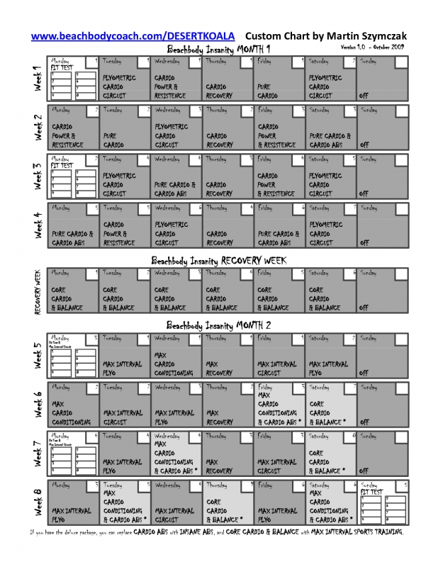 Best Insanity Workout Calendar Workout Routines  Xjb