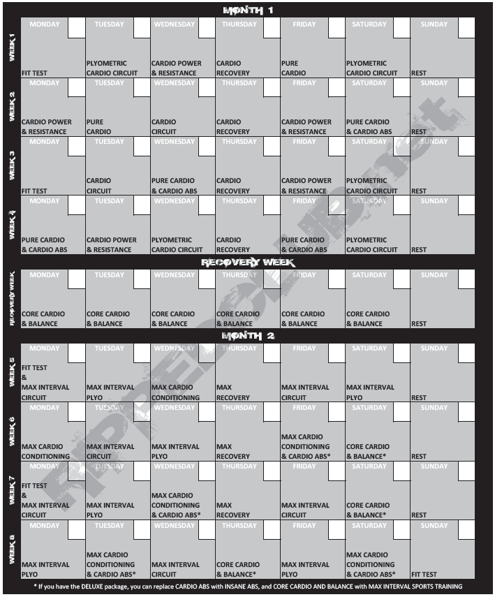 Down Load Your Totally Free Insanity Work Out Routine Pdf Sports