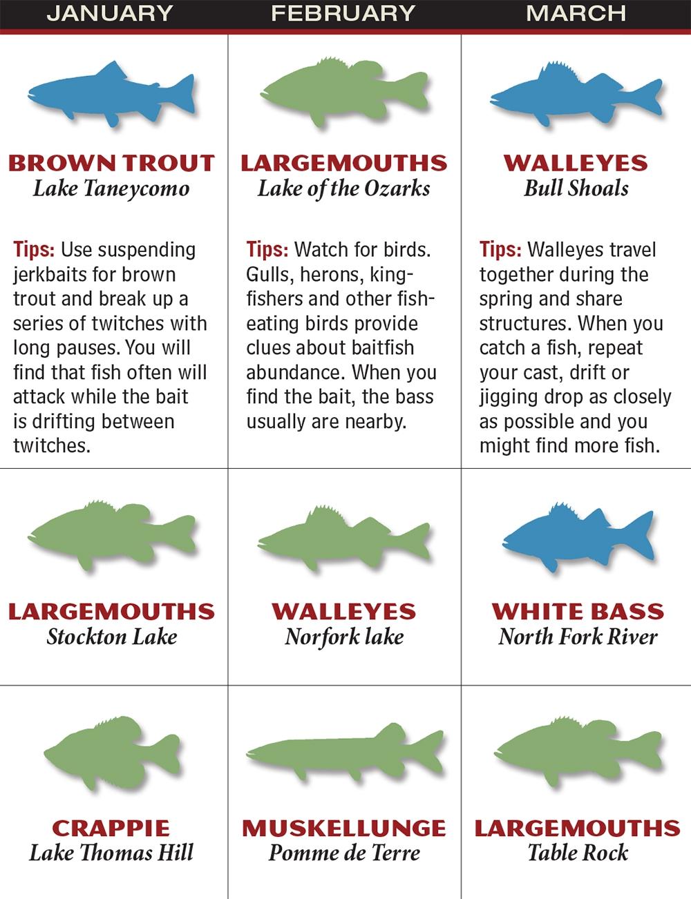 Missouri 2016 Fishing Calendar Game Fish  Xjb