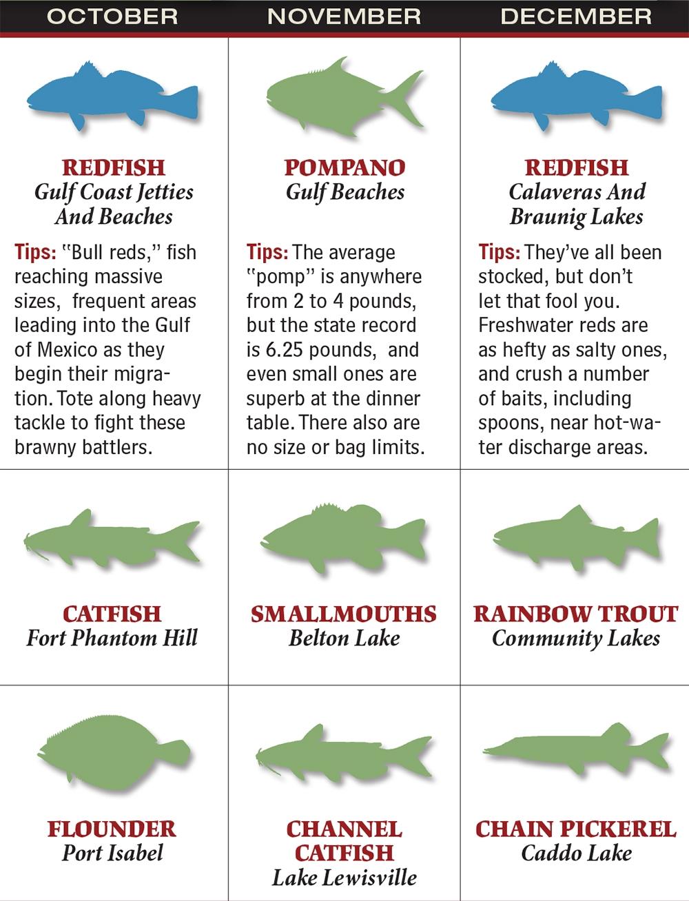 Texas 2016 Fishing Calendar Game Fish  Xjb