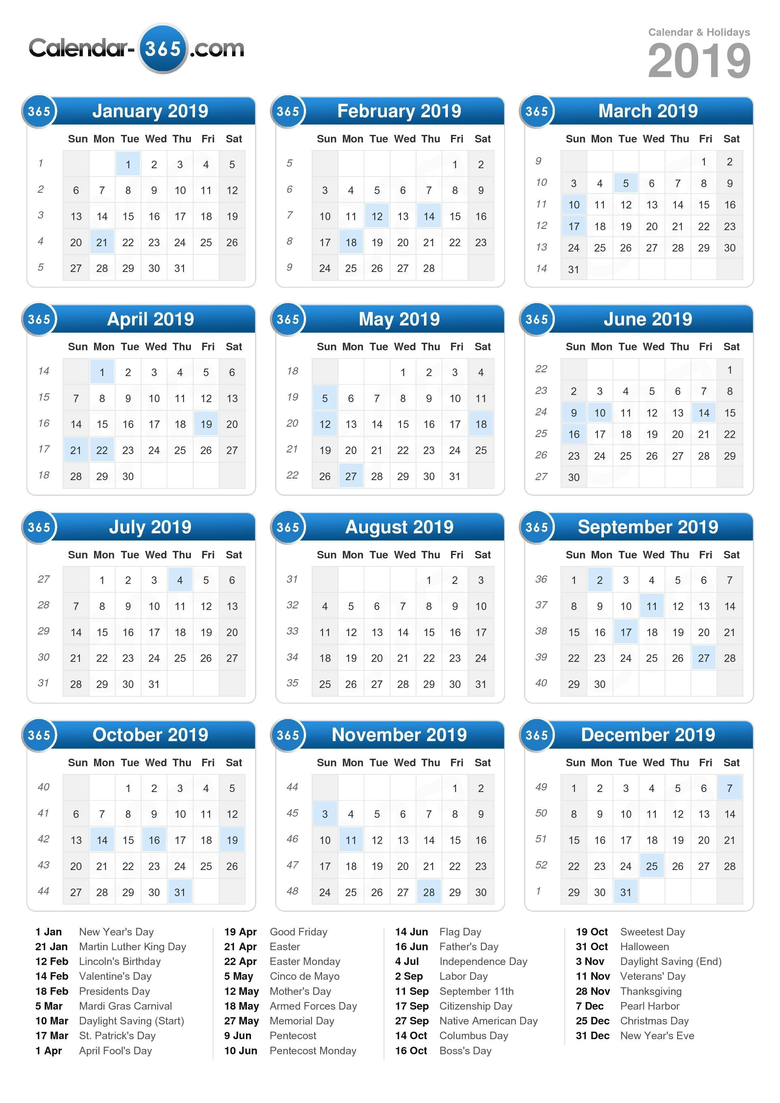 2019 Calendar 2019 Calendar 8 1/2 X 11