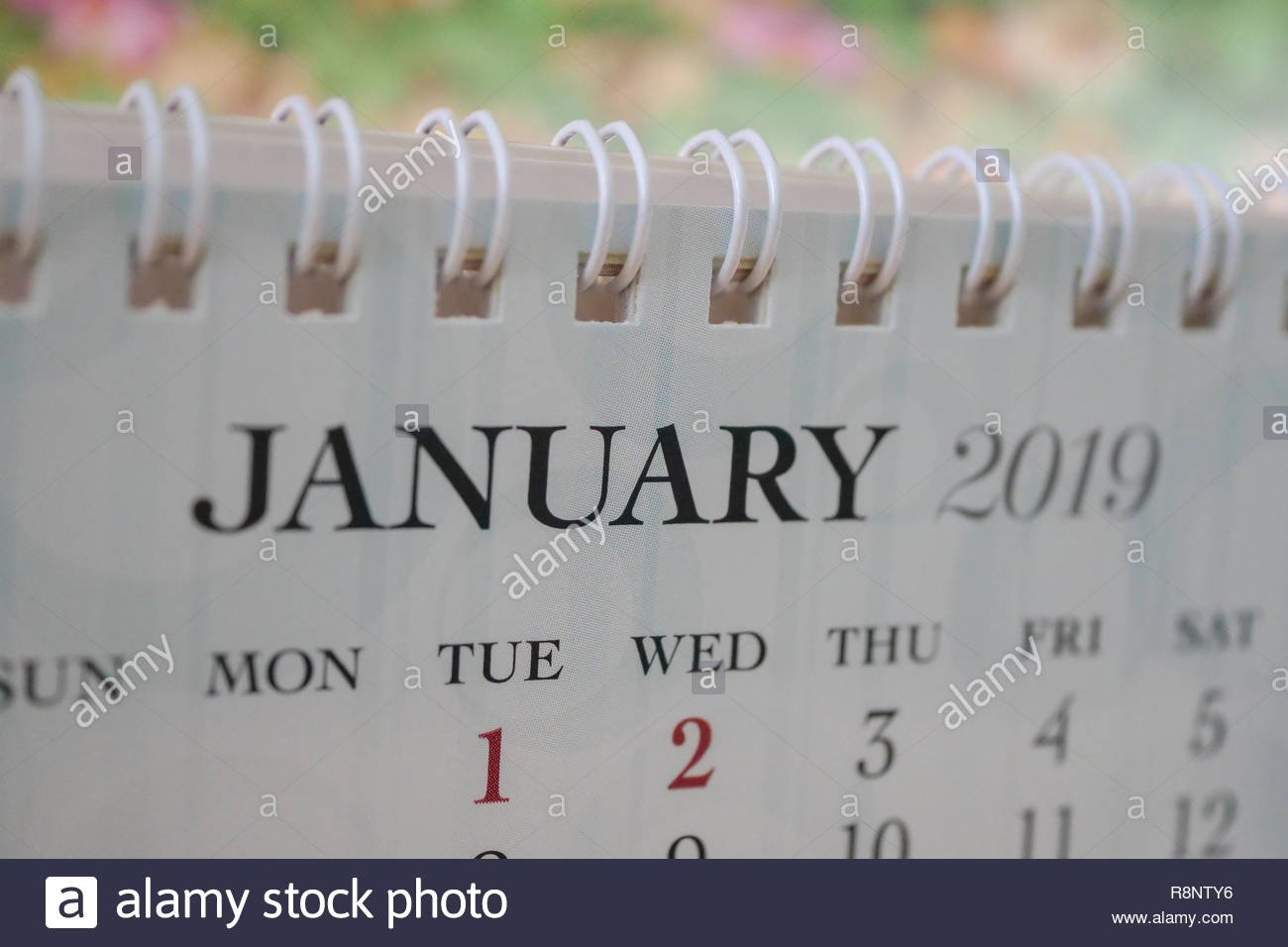Close Up Calendar Of January 2019 Stock Photo: 229132602 – Alamy Calendar 2019 Bu