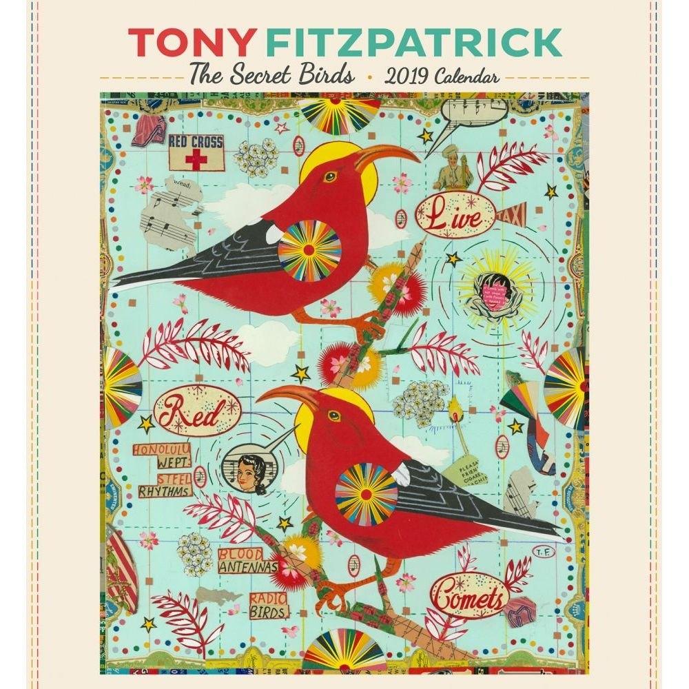 Fitzpatrick Secret Birds 2019 Wall Calendar Calendars Books Calendar 2019 Birds