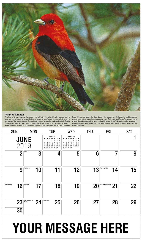 Garden Song Birds Promotional Calendar | 65¢ Business Advertising Calendar 2019 Birds