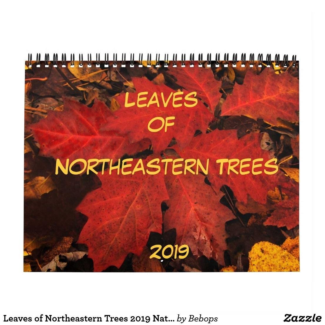 Leaves Of Northeastern Trees 2019 Nature Calendar | 2019 Calendars Calendar 2019 Northeastern