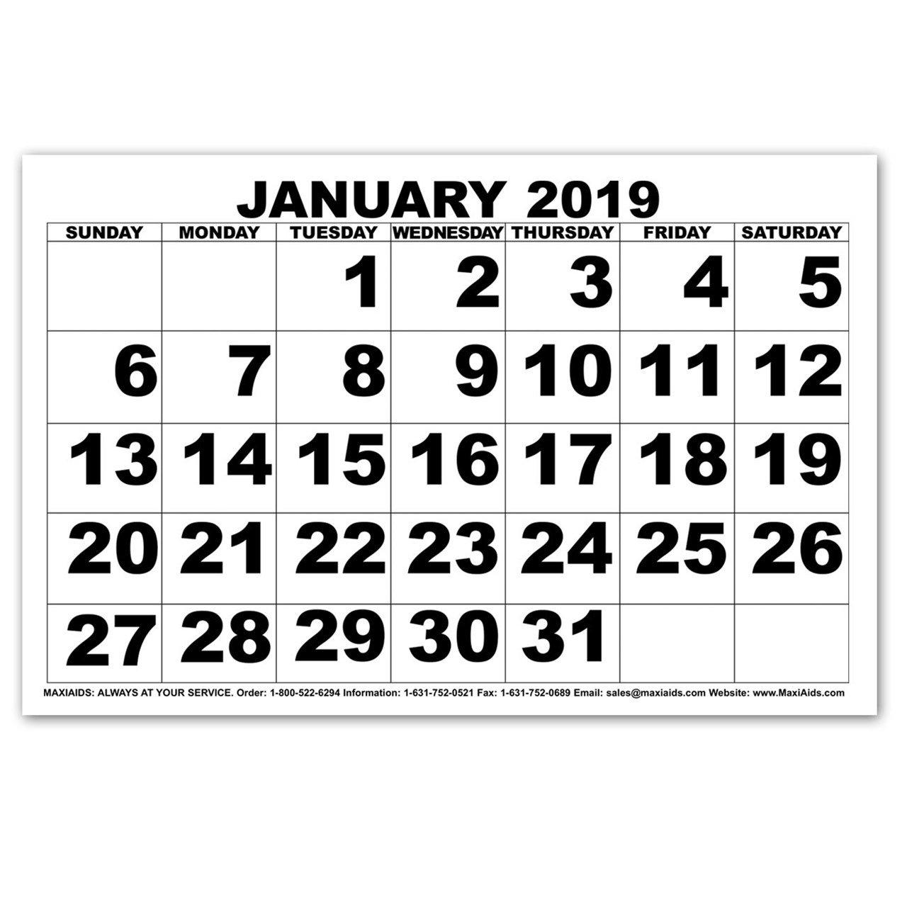 Maxiaids | Low Vision Print Calendar - 2019 Calendar 2019 Small