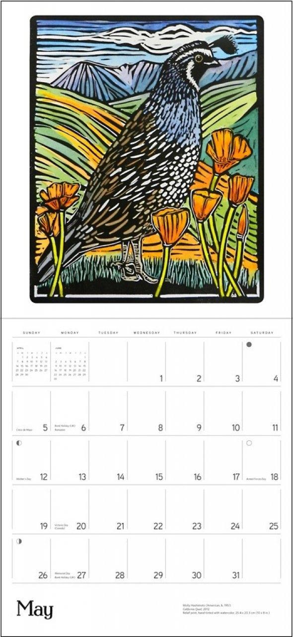 Molly Hashimoto's Birds: 2019 Wall Calendar | Nhbs Gifts Calendar 2019 Birds