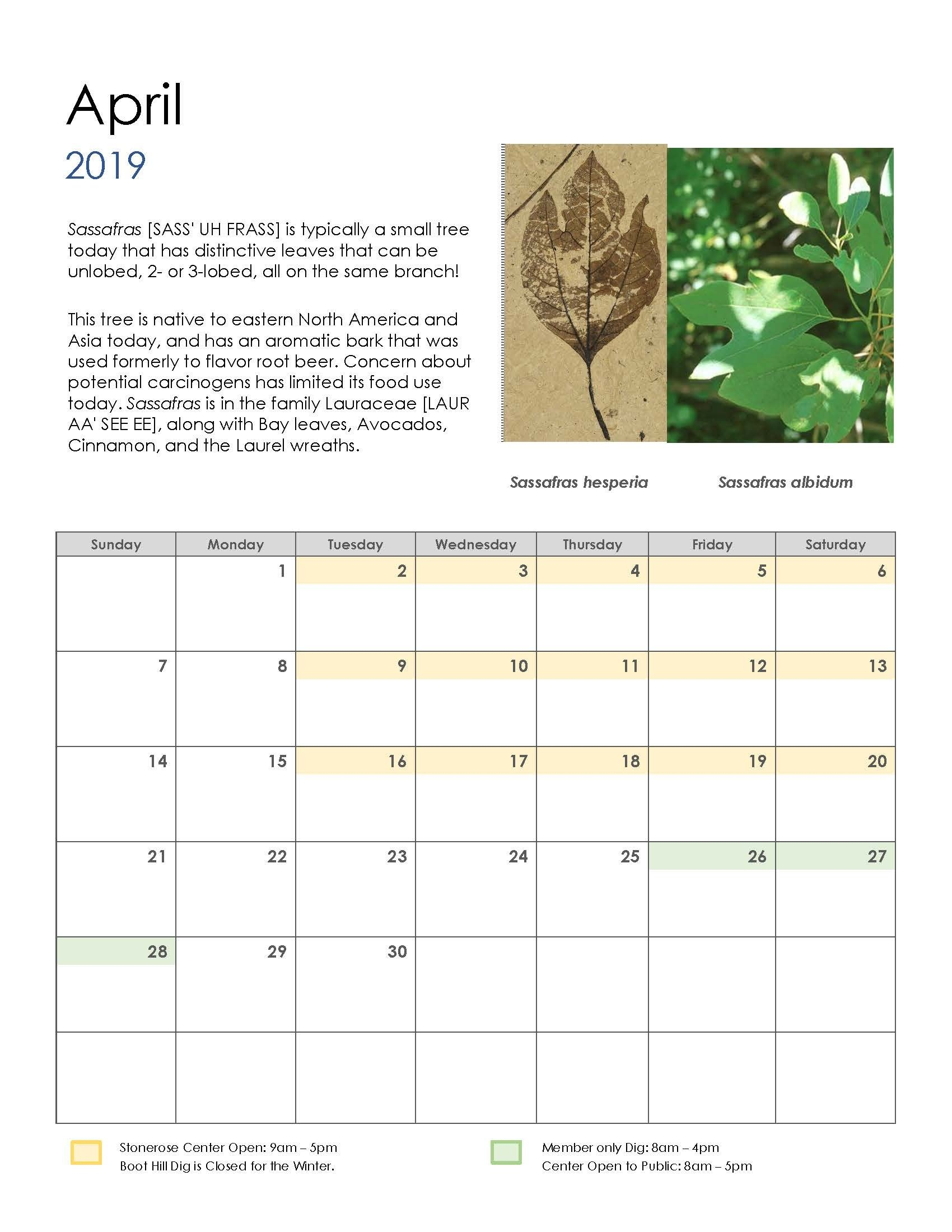 Now Is The Time To Buy Your 2019 Stonerose Fossil Calendar At The Calendar 2019 To Buy