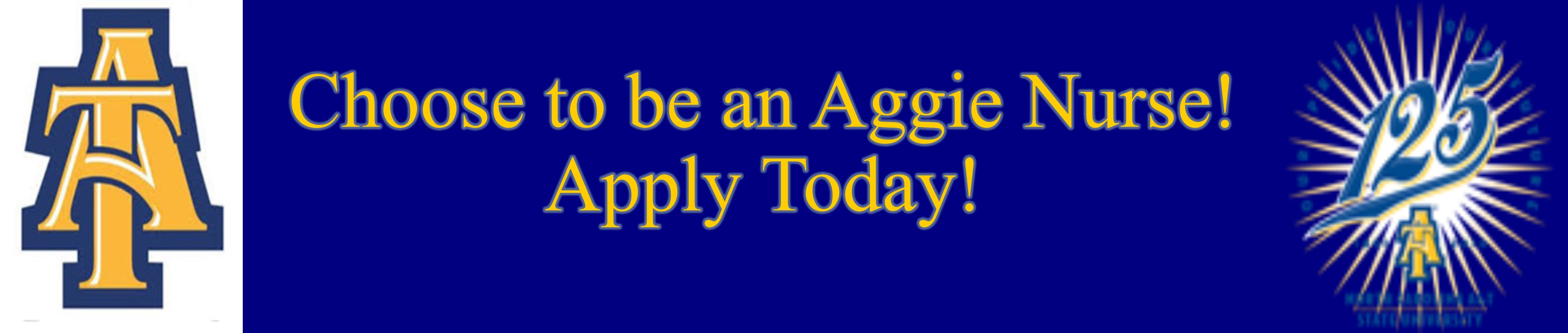 Traditional Bachelor Of Science In Nursing Entry Option – North A&t Academic Calendar 2019