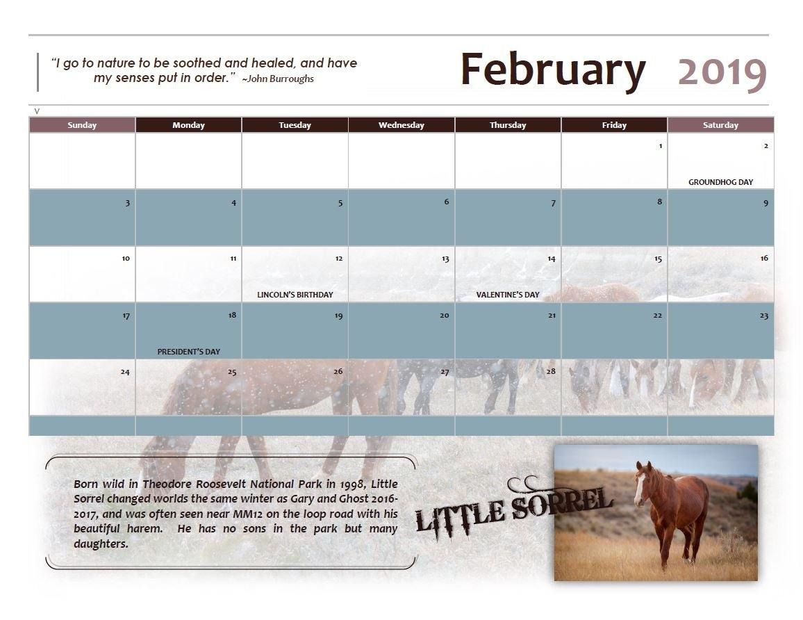 Unbounded Spirits 2019 Limited Edition Calendar – Deb Lee Carson Calendar 2019 Same As