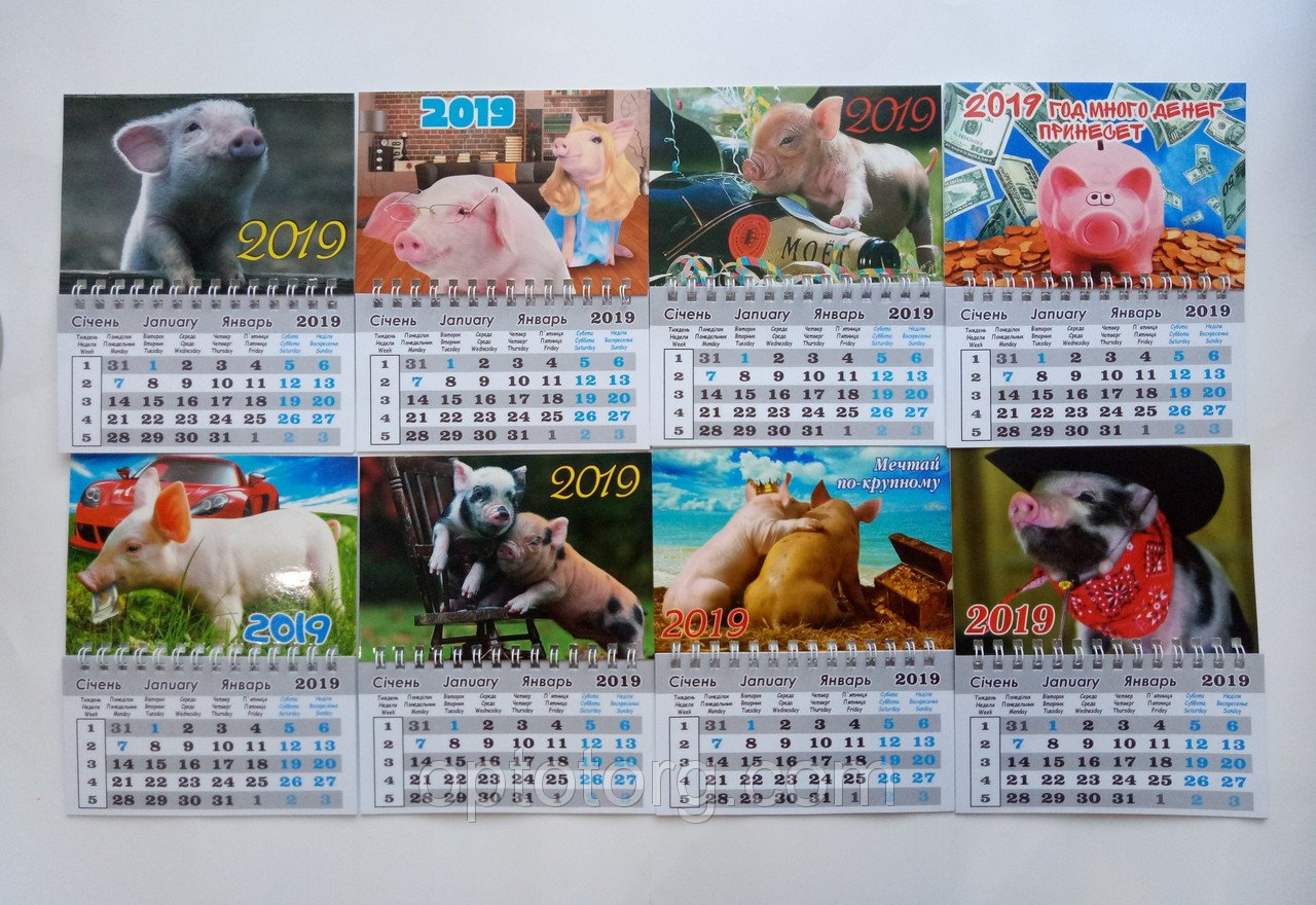 Календарь Магнит На Холодильник Год Свиньи 2019 Большой 16*13 См 9/80 Calendar 2019