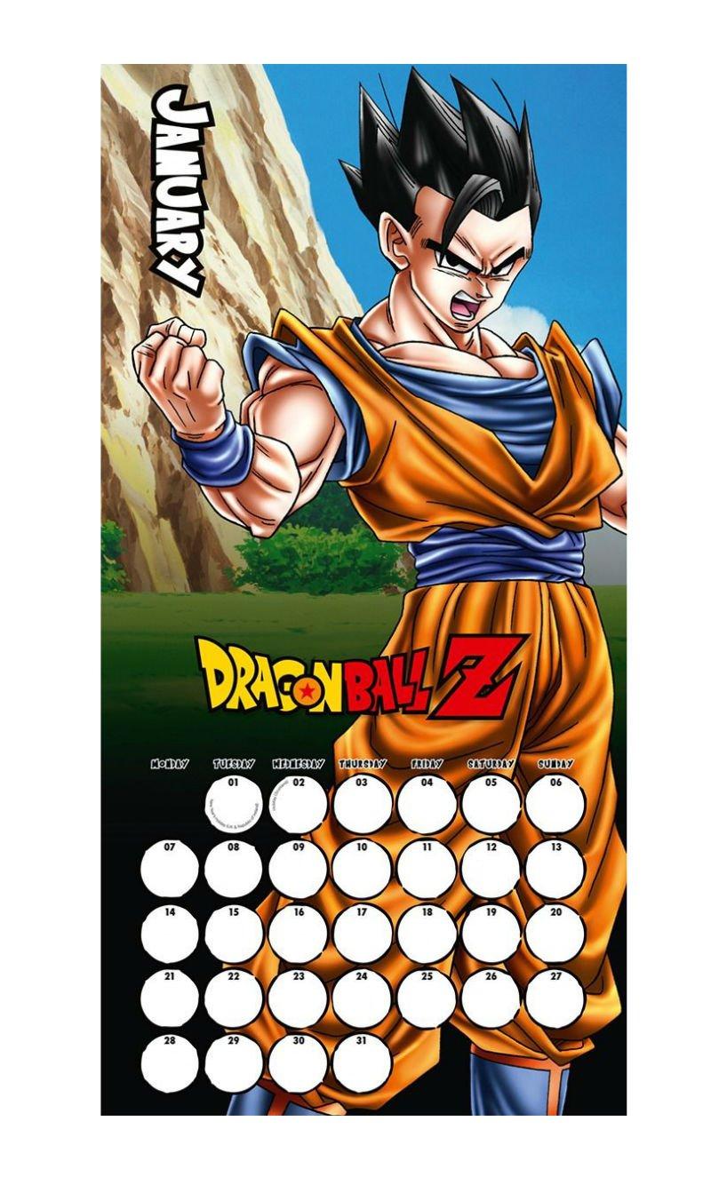 Dragon Ball Z 2019 Calendar | Playstation Gear Dragon Ball Z Calendar 2019
