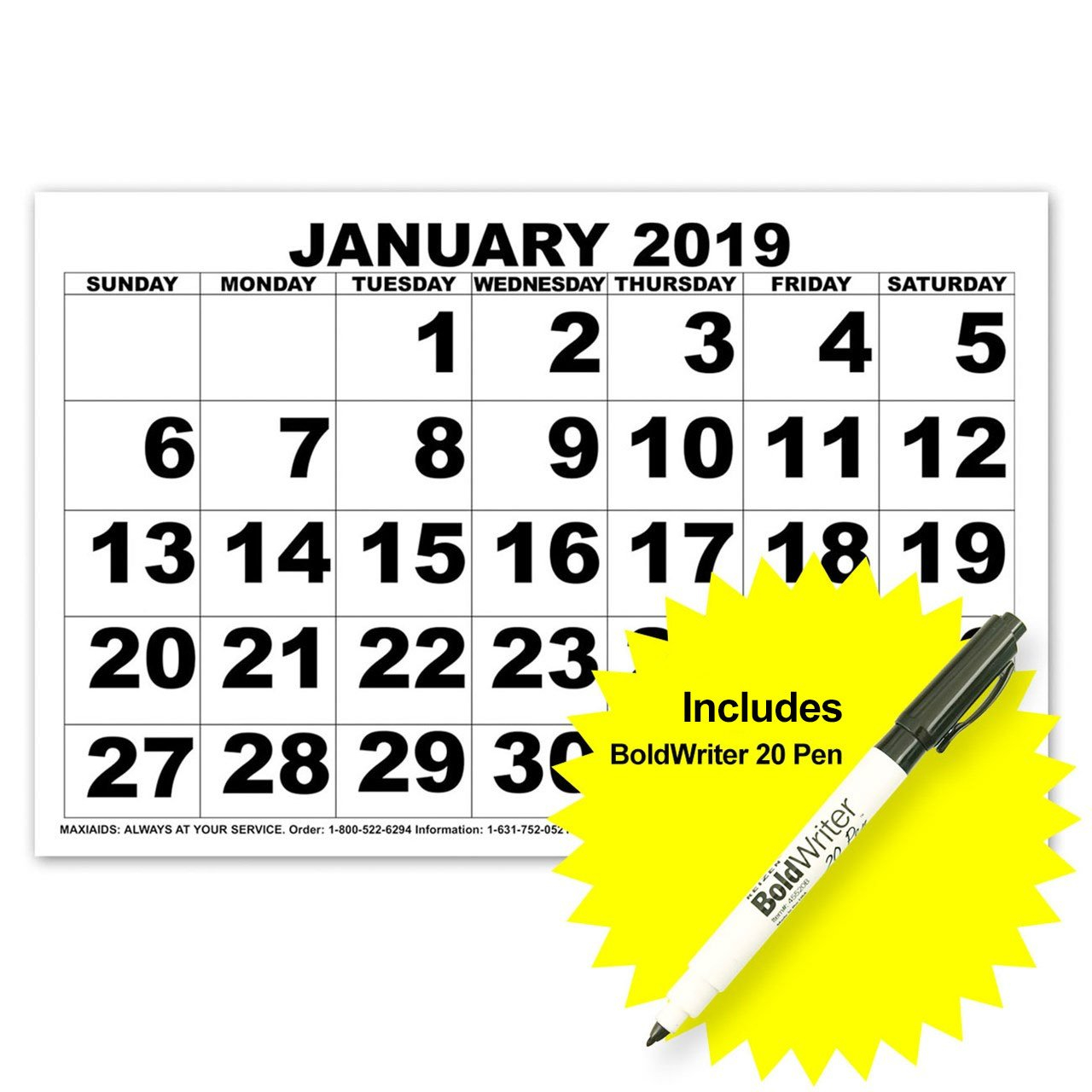 Maxiaids | Low Vision Print Calendar – 2019 With Boldwriter 20 Pen Zeiss Calendar 2019