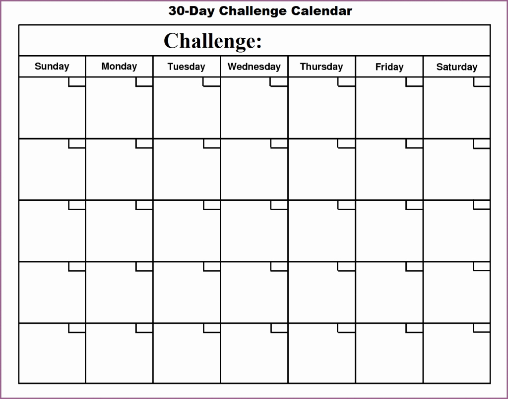 Blank Template For 30 Days   Example Calendar Printable 30 Day Printable Schedule
