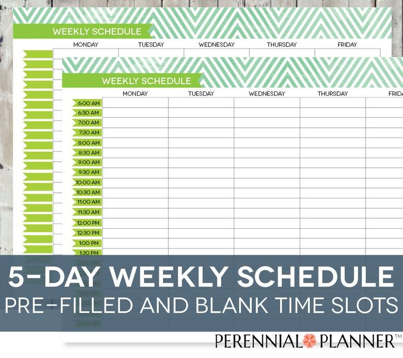 Daily Schedule Printable Editable Times Half Hourly Weekly Daily Hourly Calendar Printable