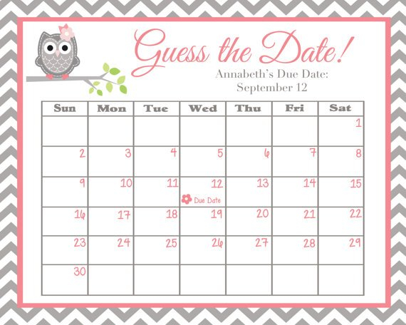 Guess The Date Pink And Grey Owl Babyswtleilanidesigns Baby Date/Time Guessing Games Verbiage