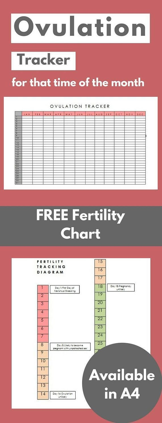 Pin On > The Little Things Menstrual Chart Printable Free