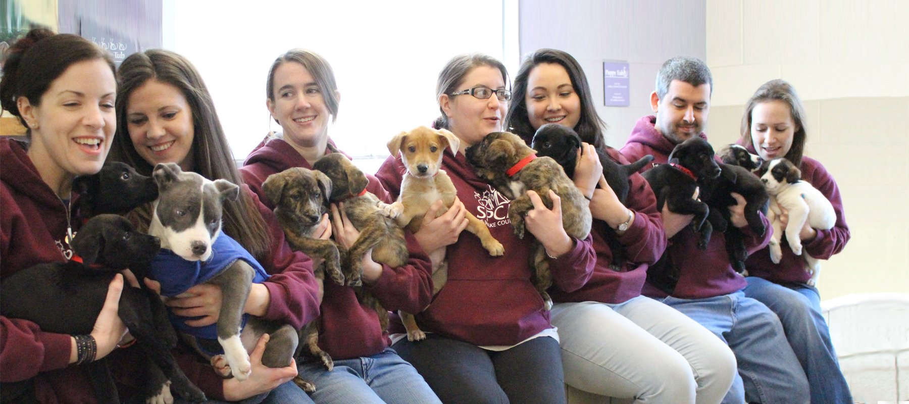 Planning Your Visit   Spca Of Wake County Wake County March Vation