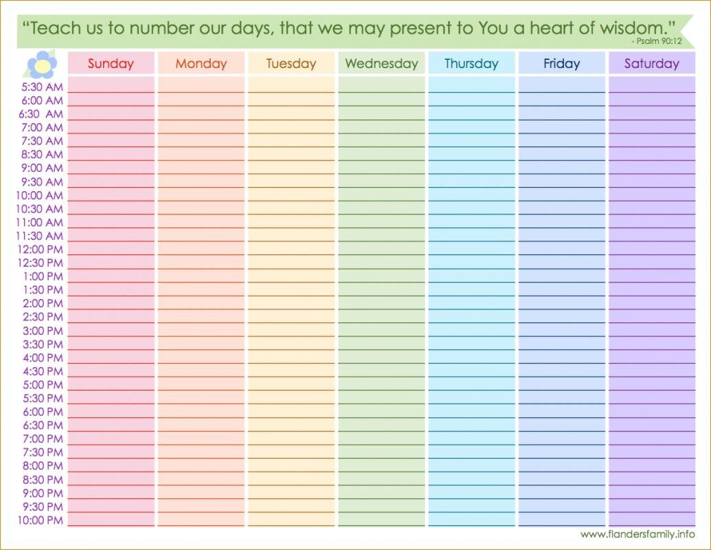 Printable Hourly Schedule | Template Business Daily Hourly Calendar Printable