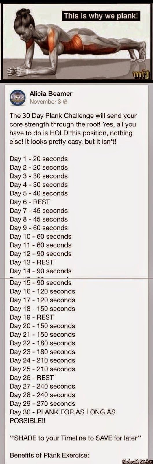 Simply Healthy: Thoughts On The 30 Day Plank Challenge 30 Day Plank Challenge Free