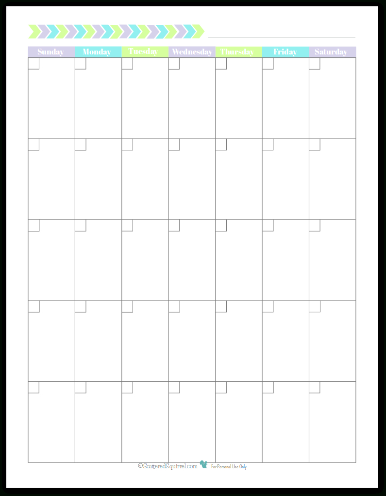 Unlined Sunday Start Portrait Full Size – Scattered Squirrel 31 Day Monthly Schedule