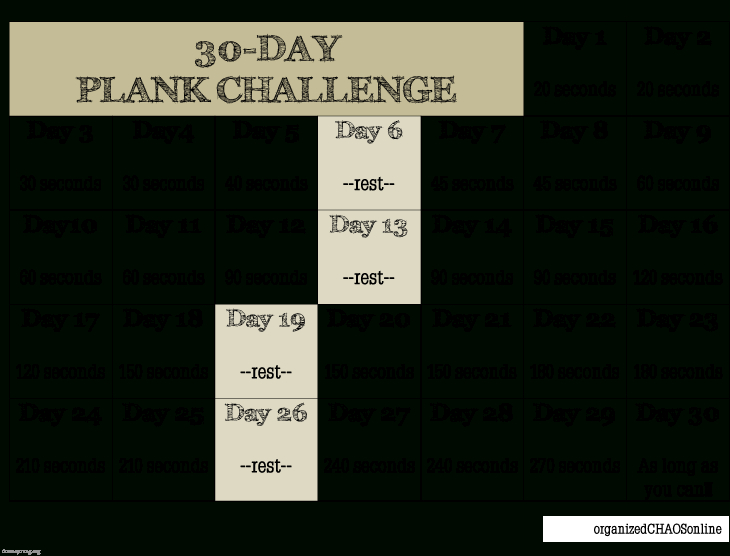 We're Doing The Plank Challenge. Are You In? (With Images 30 Day Plank Challenge Free