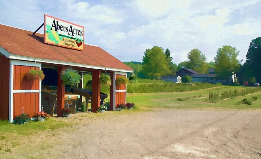 Abers Acres, Kennedy, Ny | Chautauqua County Visitors Bureau Erie County Farms Market Schedule