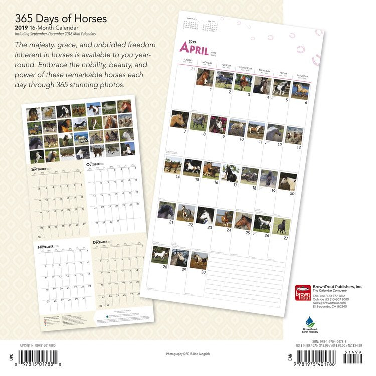 Horses – 365 Days Of – Calendars 2021 On Ukposters/Ukposters Calendars With 365 Numbbering