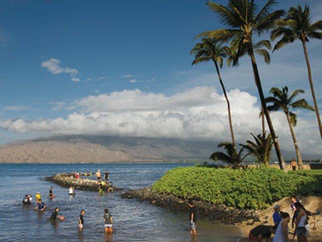 Koieie Fishpond   North Kihei Fish Pond   Maui Hawaii Hawaiian Calendar Fishing And Planting
