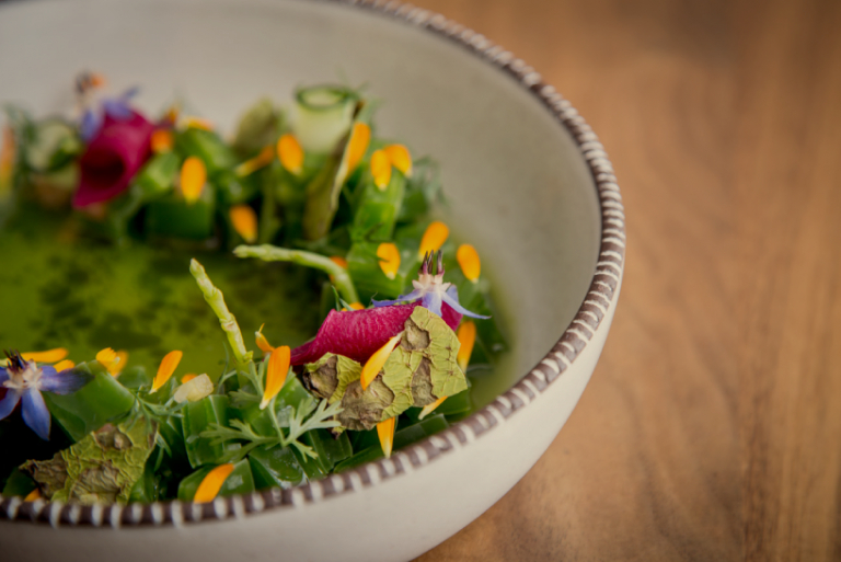 The Stalwarts: Top Mexico City Restaurants To Dine At Now Open Med Expiration Date Calculator